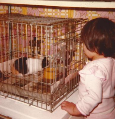entranced by a guinea pig at age 3 while I sould have been sitting down and eating lunch.